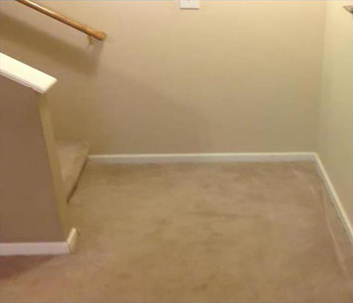 Carpet flooring with a stairwell.