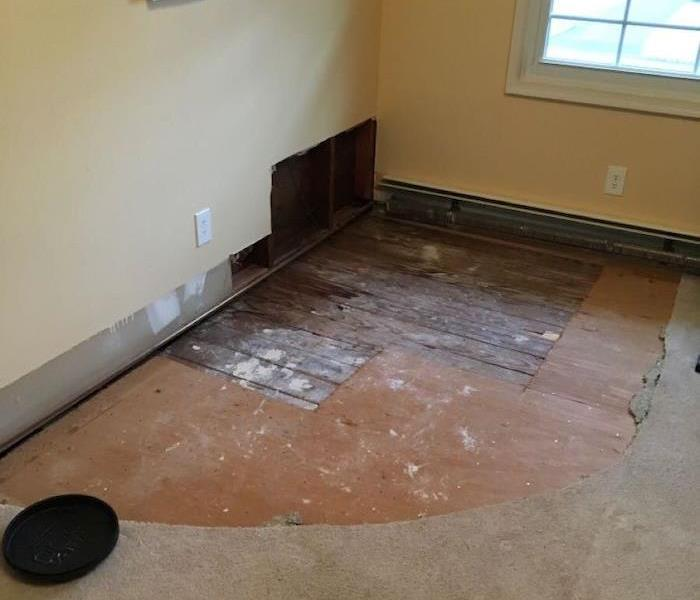 Room with flood cuts along with carpet with exposed subfloor