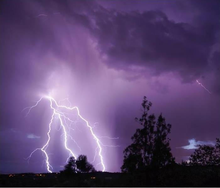 lightning strikes in night sky; trees in foreground